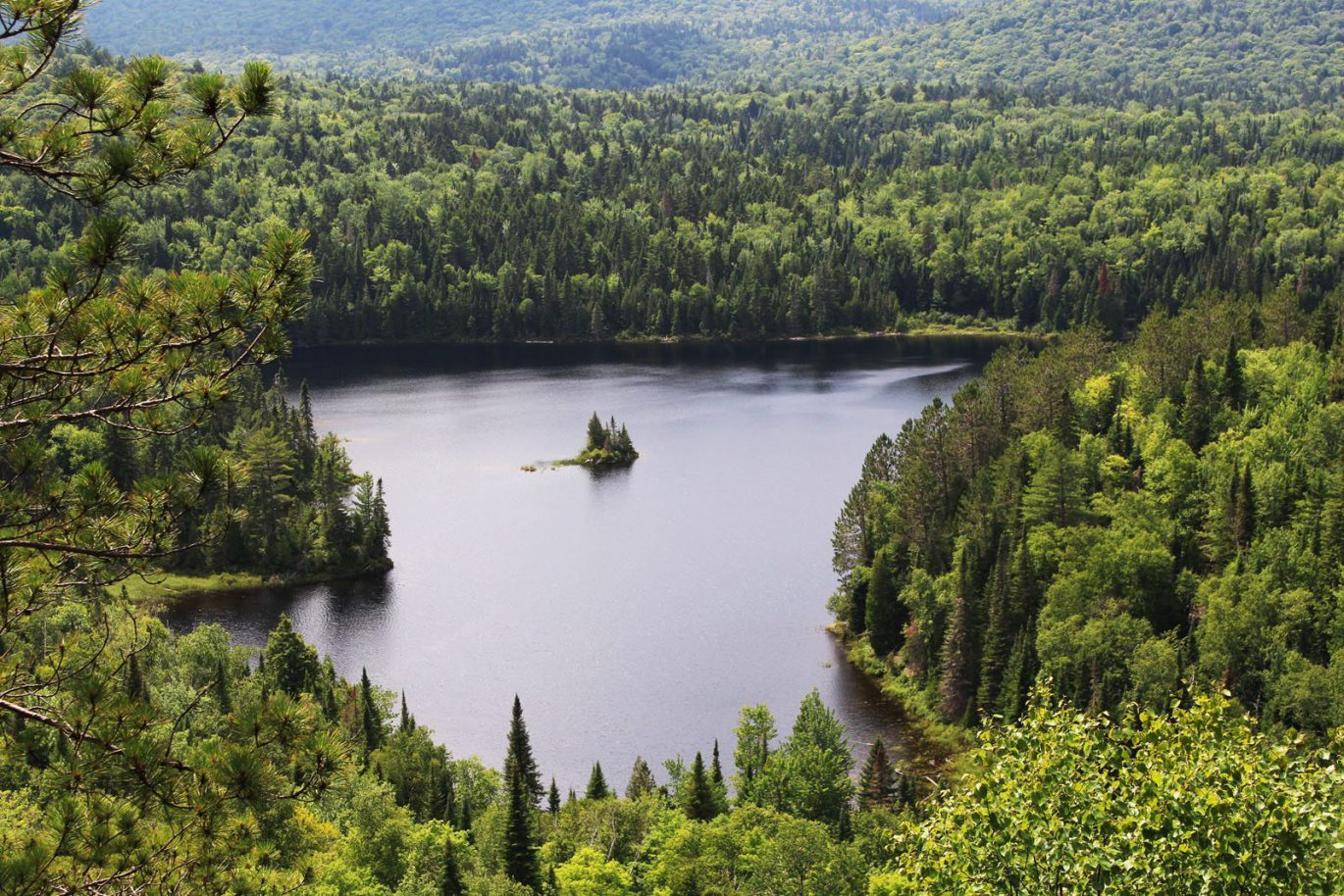 The Mauricie