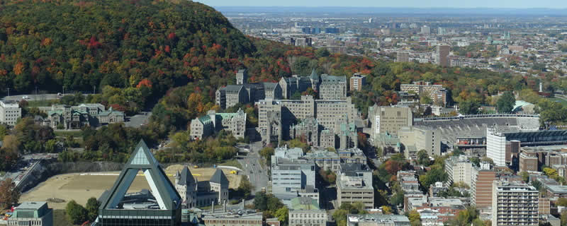 vivre-investir-ville-marie-montreal-immobilier-luxe-quebec